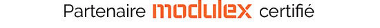 Modulex-logo-CMYK2